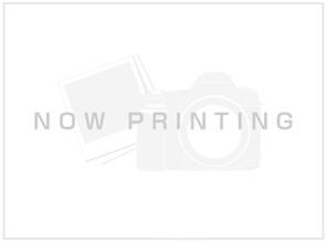ミラスモシリーズ千種区赤坂町第5期の外観