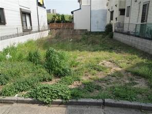 江戸川区大杉の宅地の外観