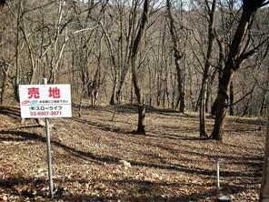 西郷黒森分譲地の外観