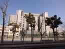 「江東区東陽1丁目」建築条件なしの宅地のその他