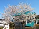 伊東市川奈 地下車庫付き!桜を望む3階建住宅の住戸からの眺望