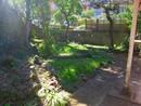 熱海市下多賀 平坦なお庭付きの平家建!ガーデニング楽しめます!の庭
