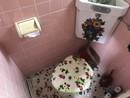 兵庫県川西市小花1丁目のトイレ