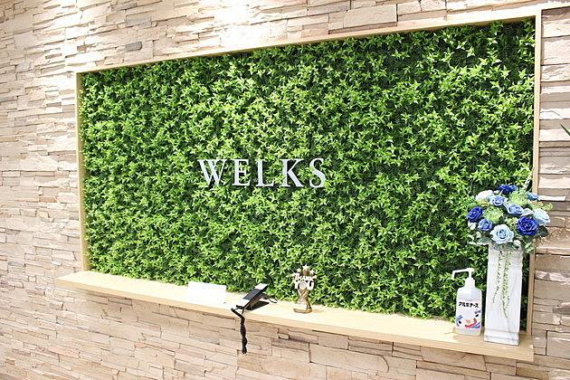 絶景!東京スカイツリーも社内も見渡せる「ウェルクス」のオフィスに行ってきた