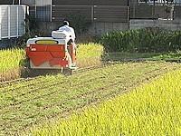 「田園住居地域」って何?都市部の農地どうなるの?