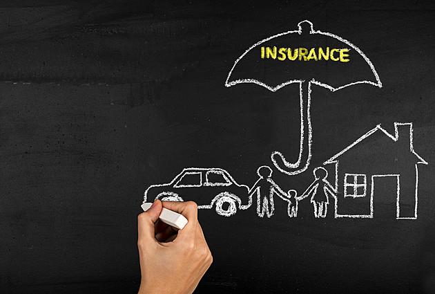 資産を増やすなら「生命保険」と「不動産投資」どっちから始めるのが正解?