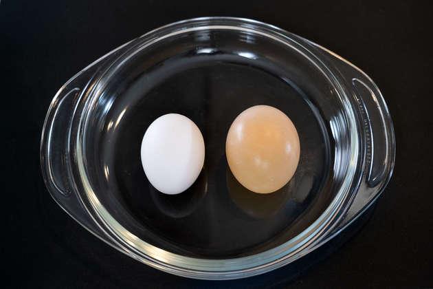 卵 を 酢 に つける と 殻 が 溶ける 理由
