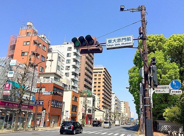 私立中進学率、東京23区第1位!教育熱が高すぎる「文京区」の最新教育事情とは