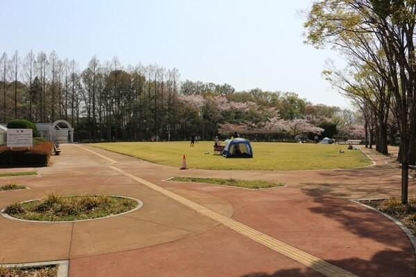 さぎ山記念公園の芝生広場