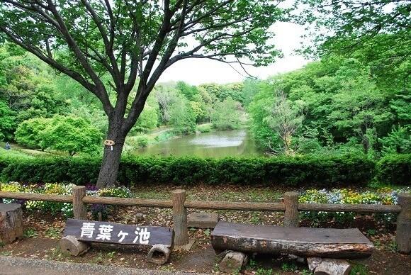 青葉の森公園6