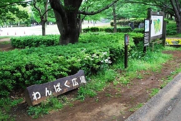 青葉の森公園7