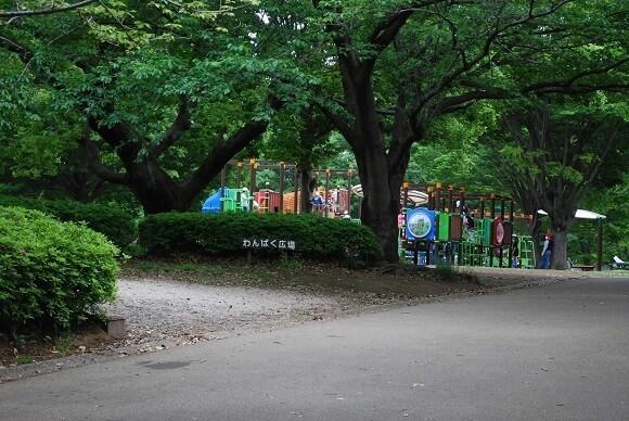 青葉の森公園8