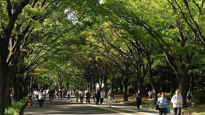 渋谷駅まで3駅たった7分!駒沢大学駅は単身者にも家族にも人気の住みやすさ