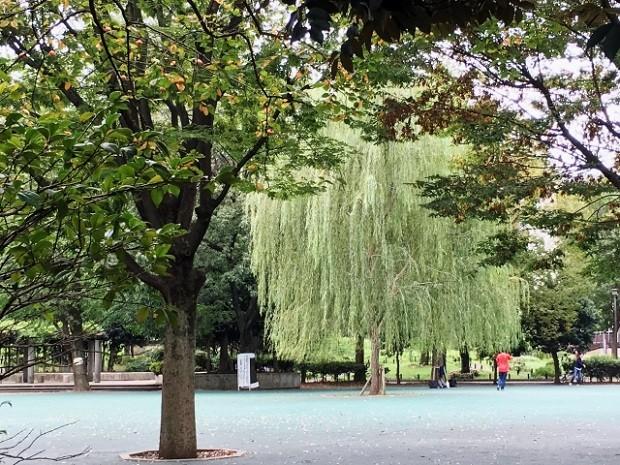 様々な種類の公園で子供と遊べる