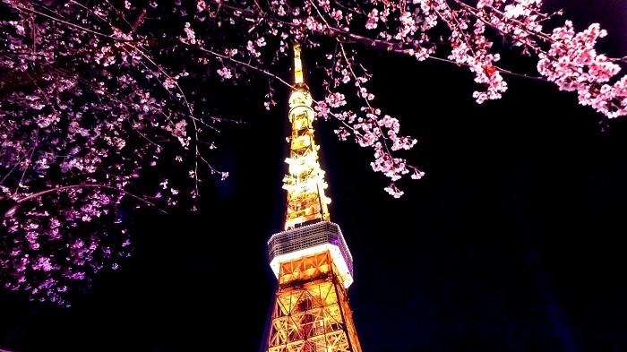 【住みやすい街・都営地下鉄大江戸線】「赤羽橋」に注目!