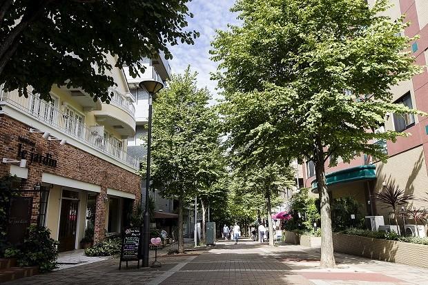 横浜市で住みやすさNo.1の街「都筑区」の魅力とは