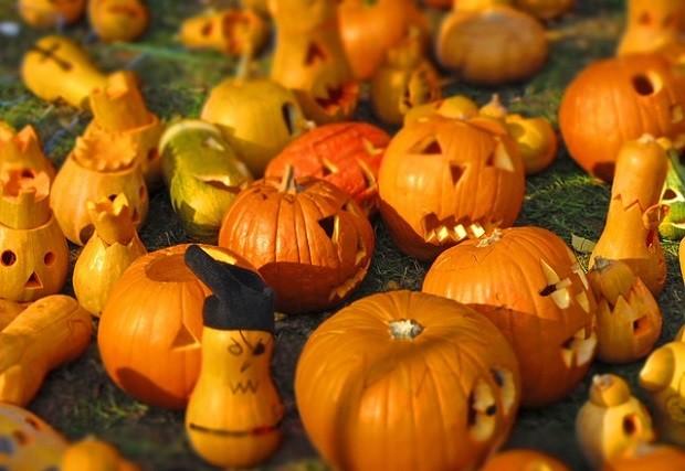 本物のかぼちゃ