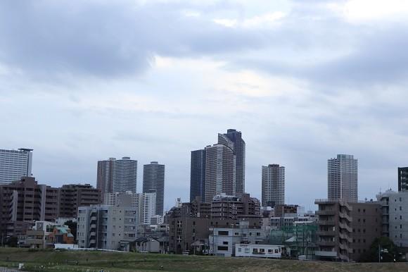 神奈川エリアの住みやすさと子育て環境