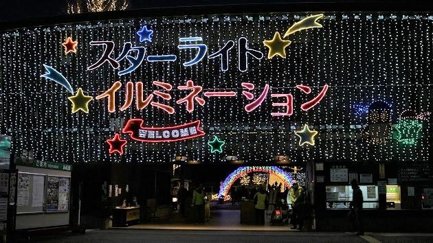 埼玉県森林公園のスターライトイルミネーションは1月8日迄