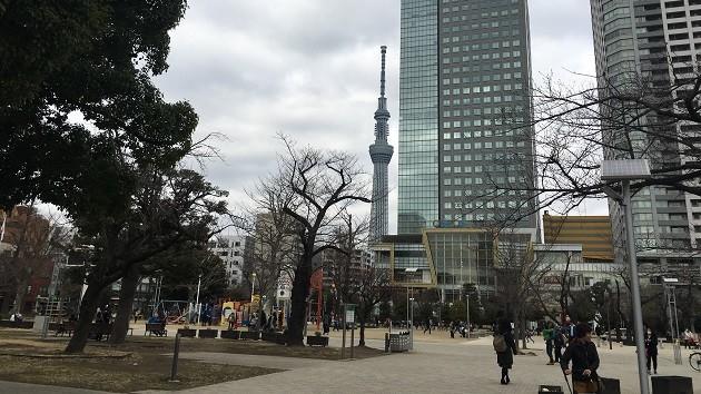 スカイツリーから近い、親子で行ける錦糸公園のおすすめスポット