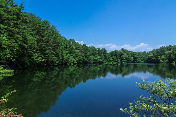 緑と水に恵まれた町「東郷町」