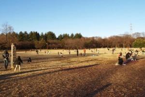 Koganeishi011 300x200