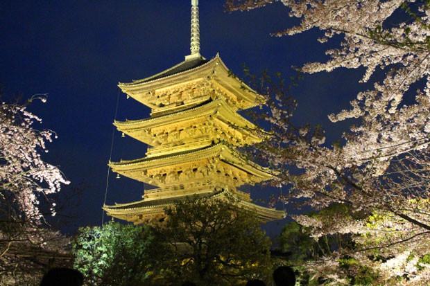 風光明媚な京のまち「京都市南区」!