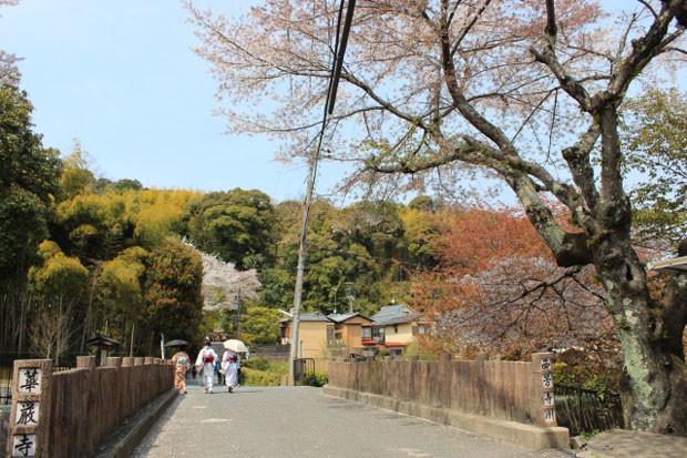 京都嵐山の美しい自然が堪能できる「京都市西京区」