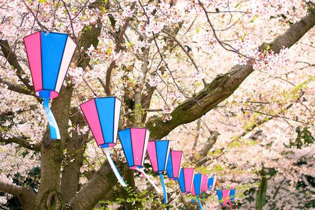 Nagoyashikitaku01