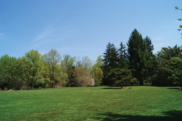 人と自然が共存する心地いいさいたま市南区の住みやすさ