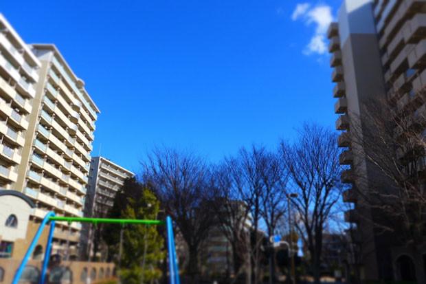 Yachiyoshi01